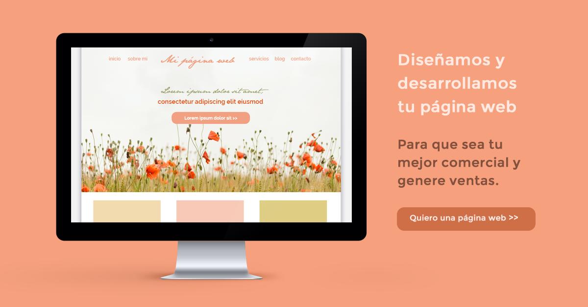 Diseñamos tu página web